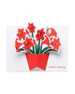 Festive Amaryllis Holiday Cards - Set of 8