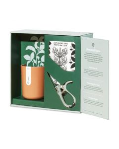 Modern Sprout Plant Gift Sets